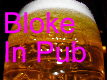 BlokeInPub.com